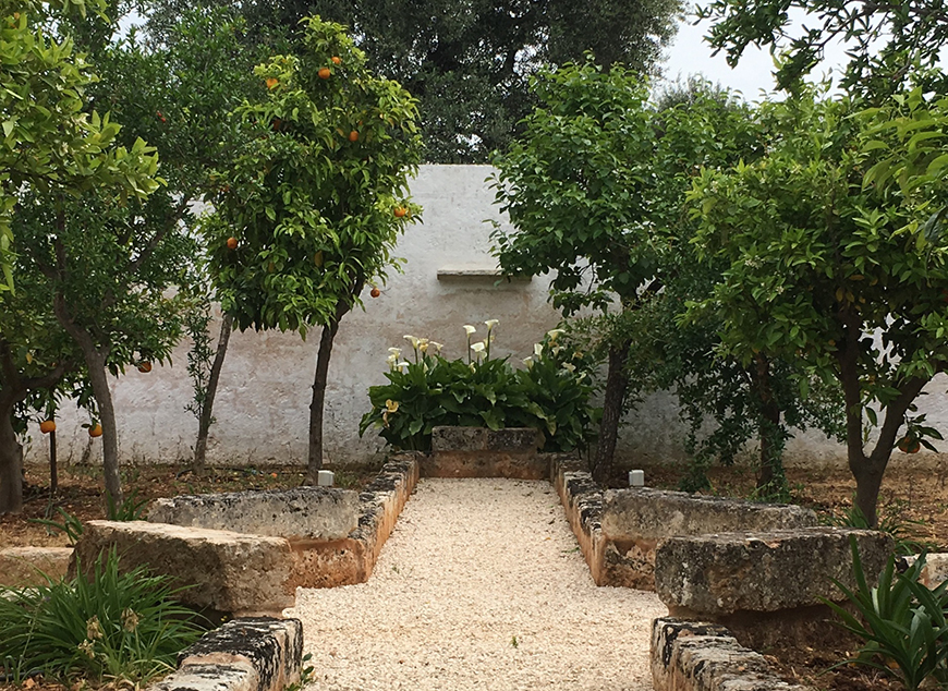 Studio Talent: Le tre corti di questa antica masseria nella campagna ostunese divengono dei giardini tematici: gli agrumi, gli ortaggi ed i fiori. Antiche pergole di vite avvolgono i colonnati della masseria.