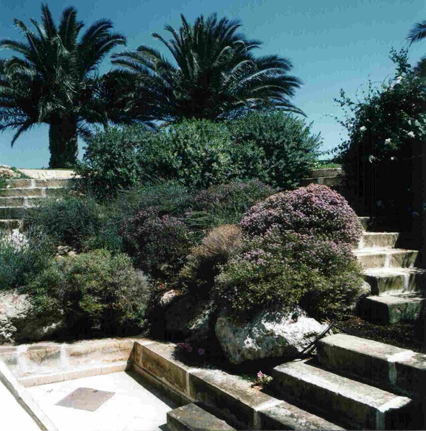 Studio Talent: Un giardino con
